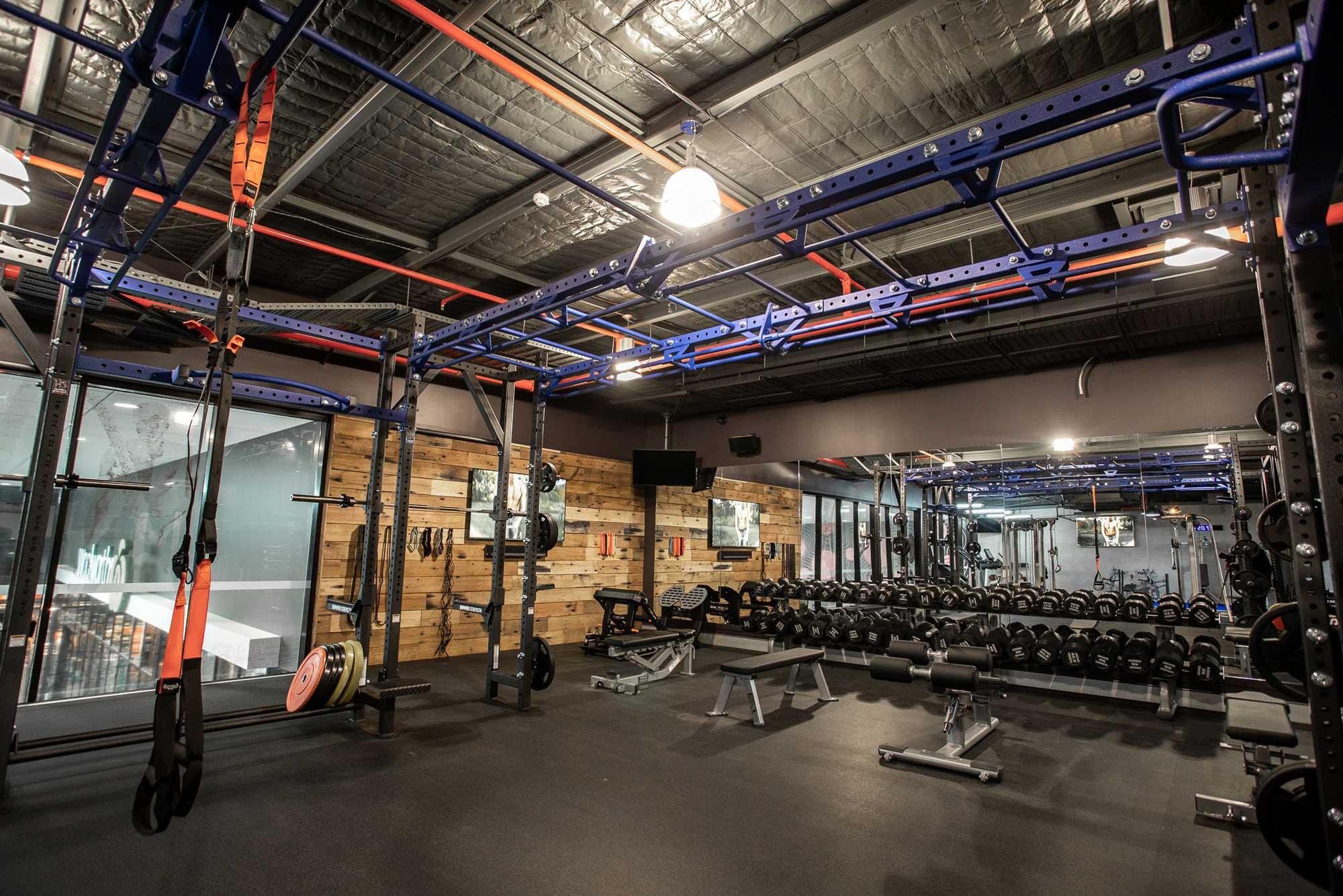 Hammer Strength Athletic Bridge and Dumbells